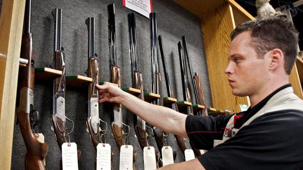 Strawman Mendacity in New Gun Law Proposal